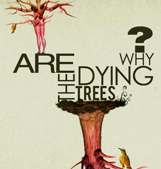 Dyingtreesb